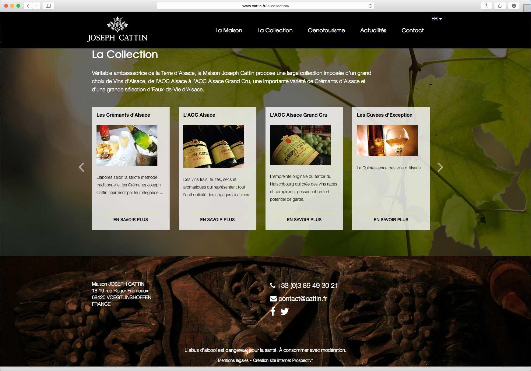 Création et hébergement du site internet vitrine de la marque 2