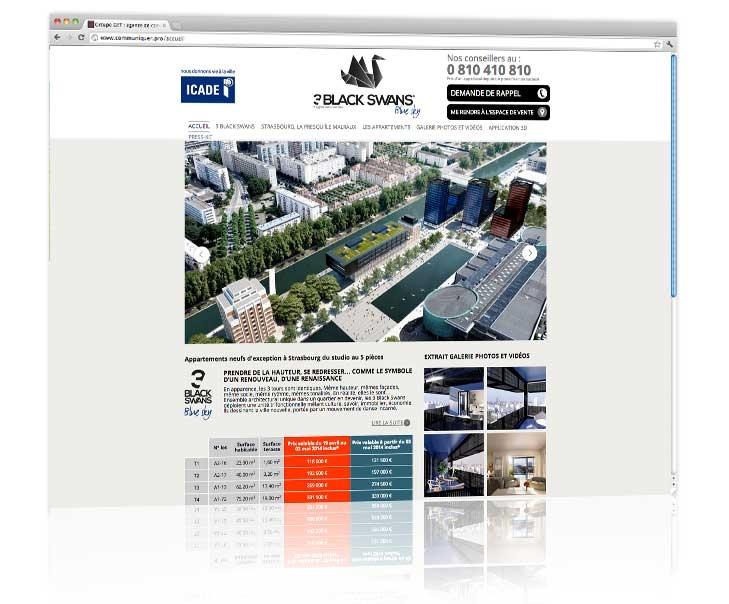 Création site internet Strasbourg - 3 Black Swans