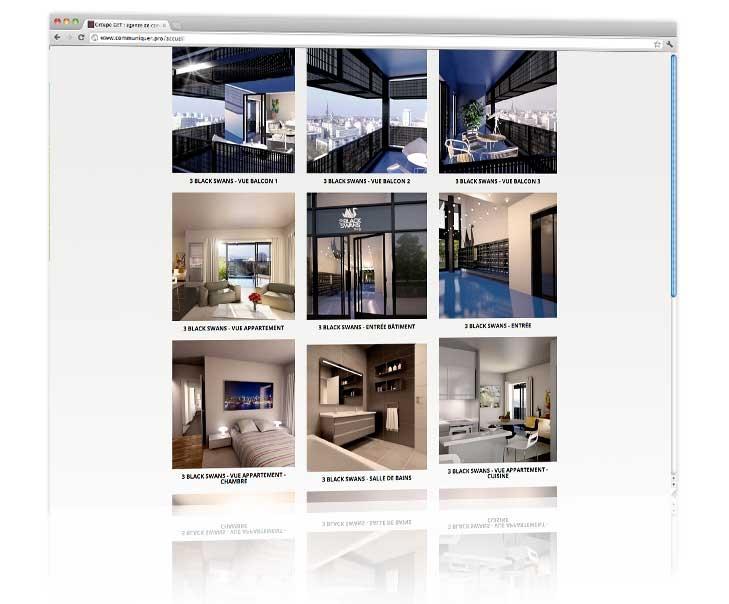 Création site internet Strasbourg - 3 Black Swans 3